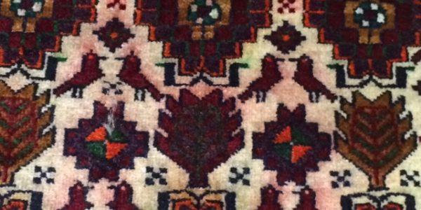 rug discolouration